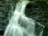 falls-brook5