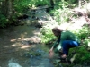 falls-brook6